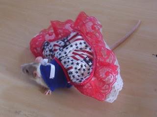 rattie in a fluffy dress