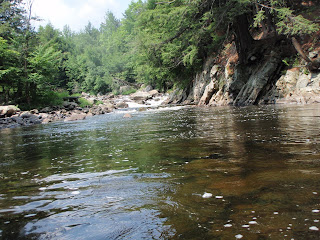 Steelhead alley outfitters lake erie fly fishing guide for Adirondack fly fishing
