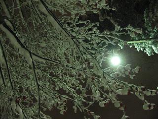 Valoa pimeyteen, 24.11.2008
