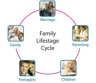 essay on family life cycle The family life cycle: definition, stages & theory - video & lesson                 studycom/academy/lesson/the-family-life-cycle-definition-stages-theoryhtml.
