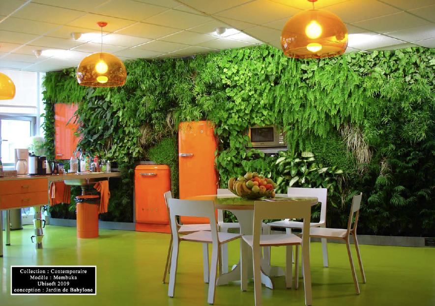 Les jardins du monde les murs v g taux d 39 int rieur - Mur vegetal d interieur ...