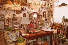 Curiosity Store, Oud-Beijerland