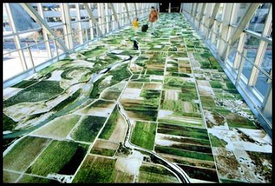Flying carpet Sacramento Airport