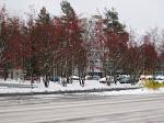 Finland - Oulu