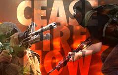Petizione Basta guerra a Gaza