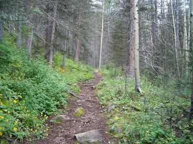The Baker Trail