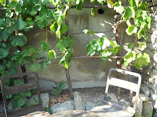Garden Grotto Designs Home Decorators Collection