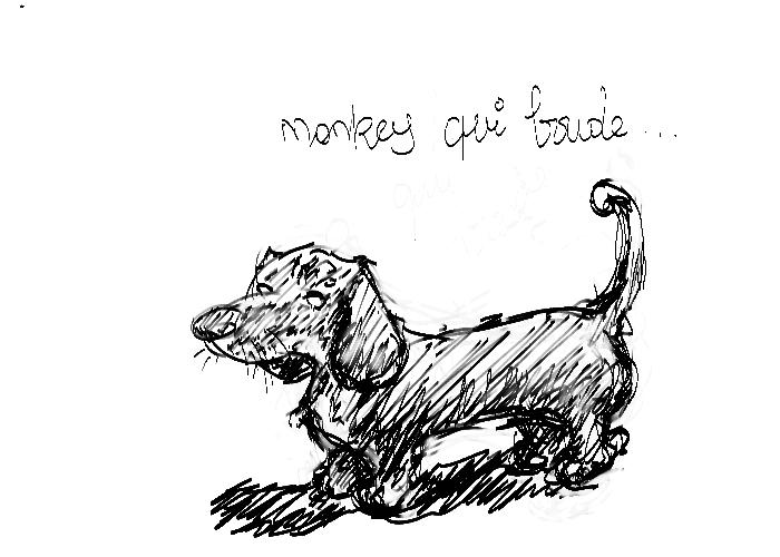 [monkey]