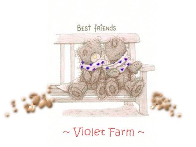 . . VioletFarm . .