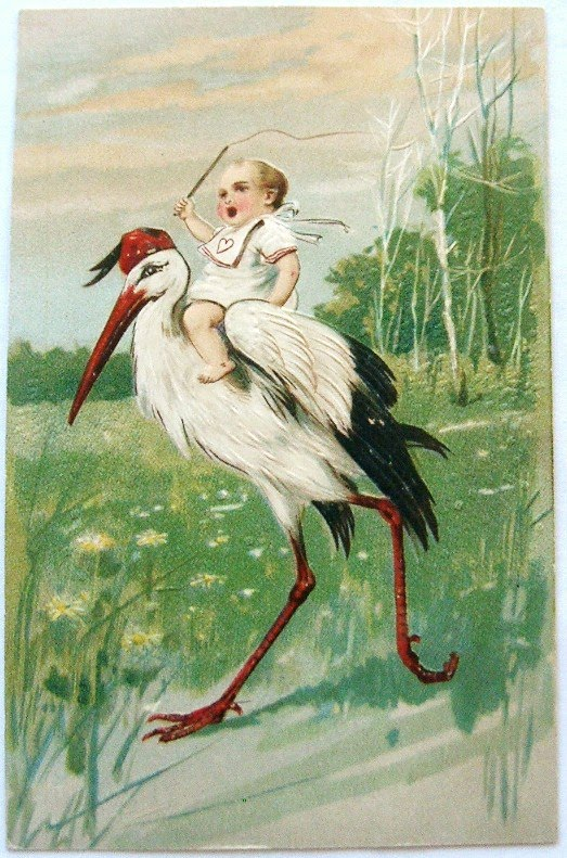 postcardiva postcard blog Antique BABIES STORKS Birth – Stork Birth Announcement