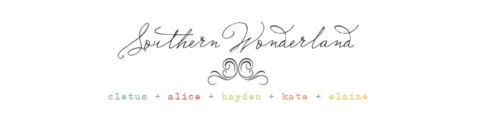 Southern Wonderland