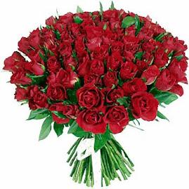 Imagenes De Rosas Azules Preciosas - Imagen de rosas azules muy bellas compártela