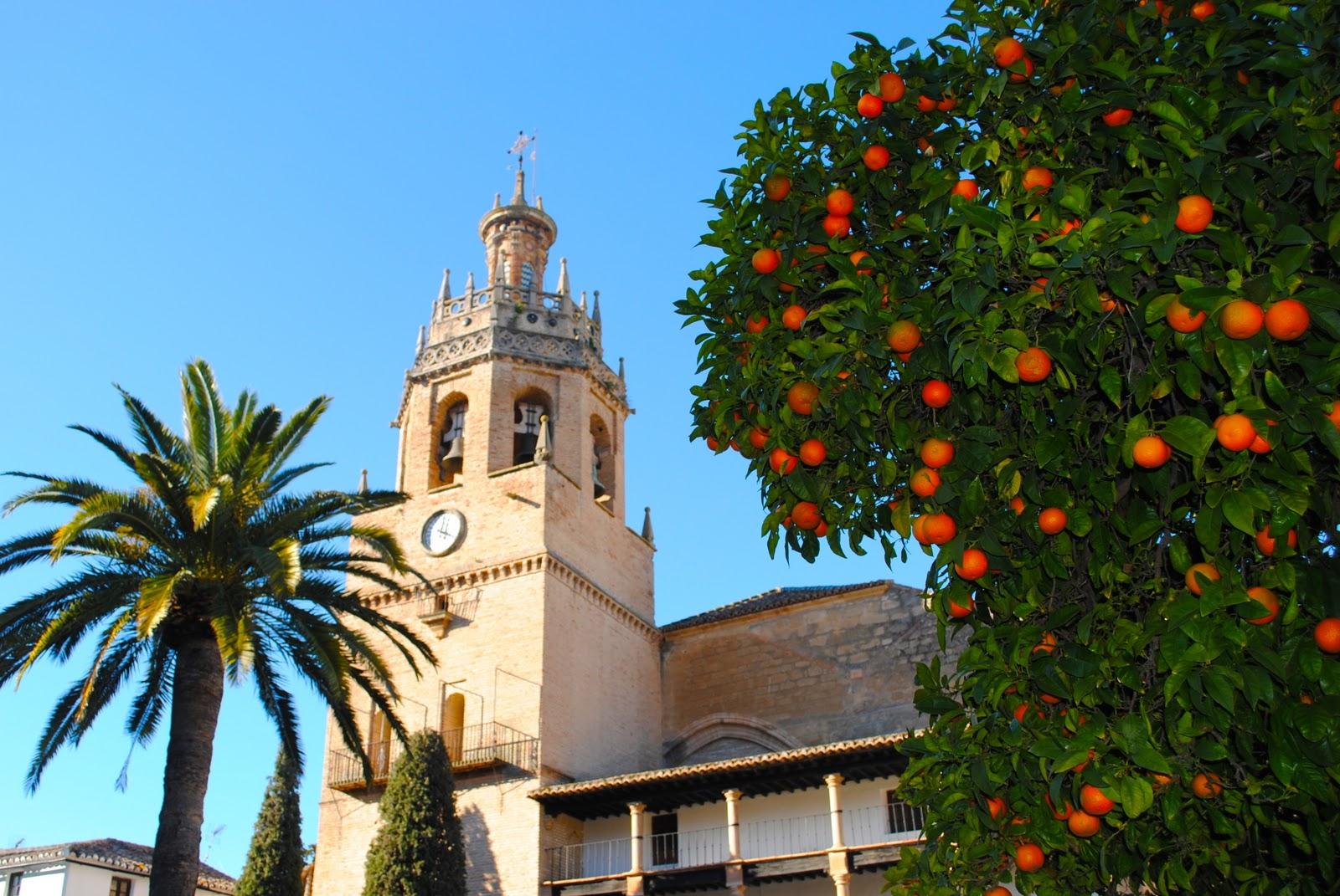A broad abroad - Orange en sevilla ...
