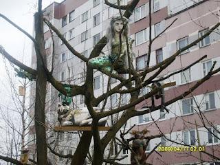 У лукоморья дуб зеленый, русалка на ветвях сидит