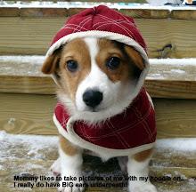 Snowy Zoie