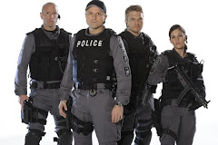 Flashpoint--My Fave Show