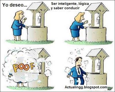 Estupidas
