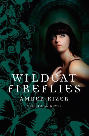 http://2.bp.blogspot.com/_-LvpTItHa8E/THFIn8ojlpI/AAAAAAAAEo0/boIxLdIPQwc/s1600/wildcat+fireflies.jpg