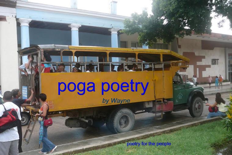 poga poetry