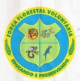 força florestal brasil