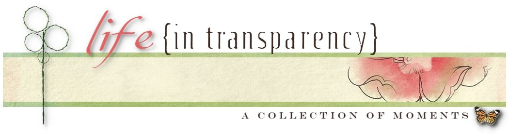 life {in transparency}