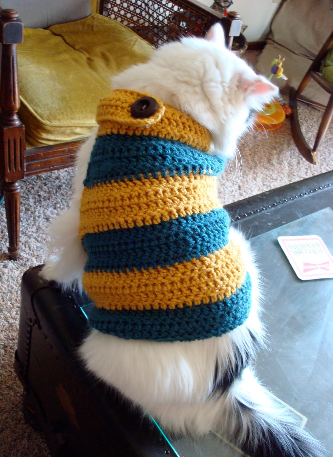 rabbit abby: huskaroo banded kitty sweater