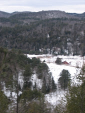 The Valley in Winter