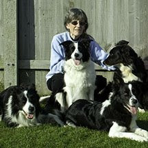 auntie jane  i used to work my border collies in competitive obedience
