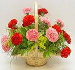 ¡¡¡ Gracias Flor !!!
