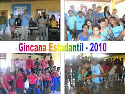 GINCANA 2010