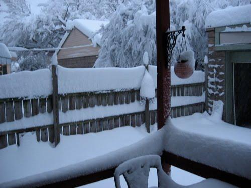 [SnowonFence]