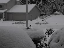 Worst snow storm since 1968