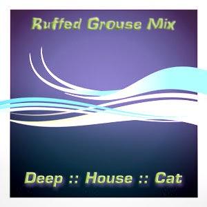 DJ Disciple D.J. Disciple Freeze Club Mixer Volume 6: DJ Disciple Megamix '96