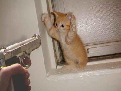 ¡SEXO! Y ahora que he captado tu atención.. {0/2} Pistola+gat