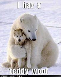 LOL Bear!
