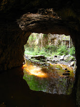 hummeltunnel