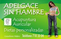 ADELGAZAR Y MANTENERSE