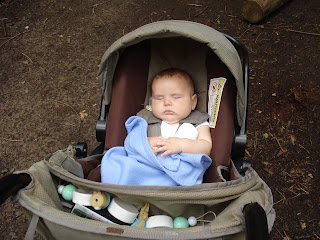 Baby Boy asleep in his pram in the woods