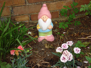 Percy the Gnome