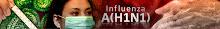 Perkembangan Terkini H1N1