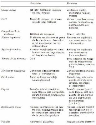 celula procariota y eucariota. Comparando celula eucariota y