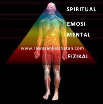 Kumpulan organ berdasarkan level tubuh