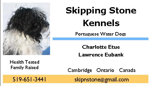 SkipNStone KENNELS