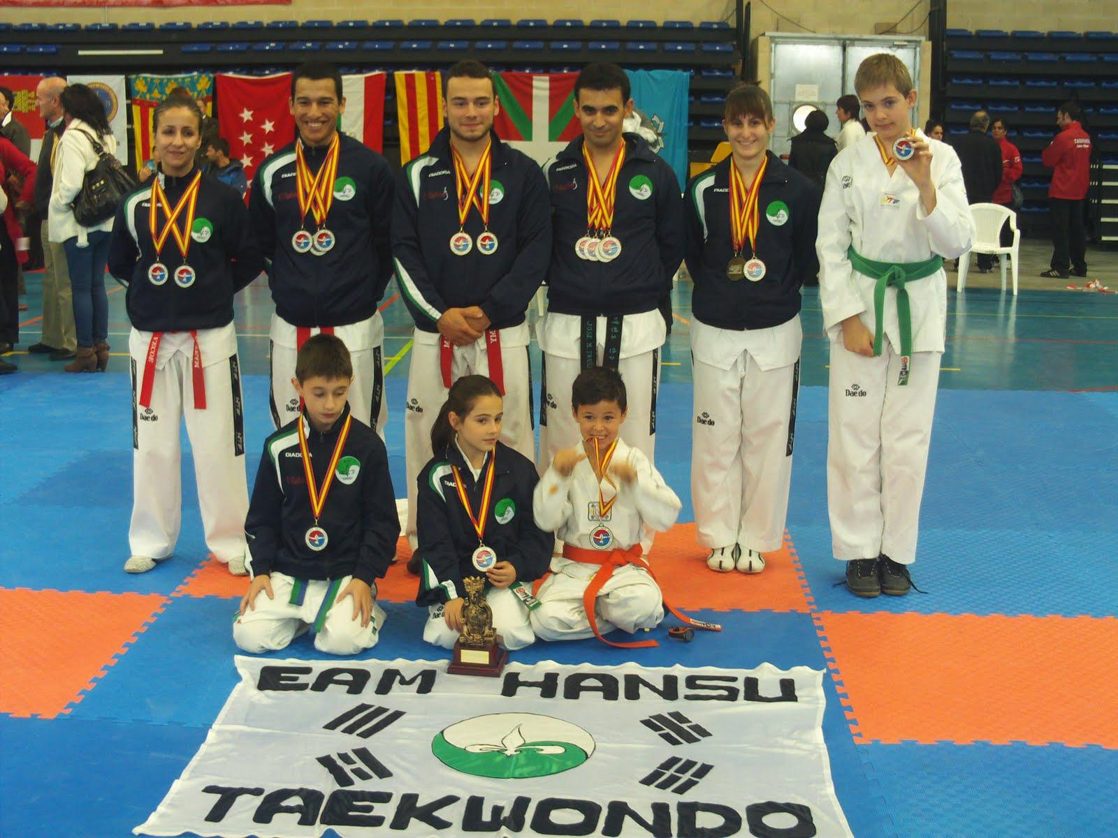Escuela de taekwondo hansu 2010 for Gimnasio yuncos