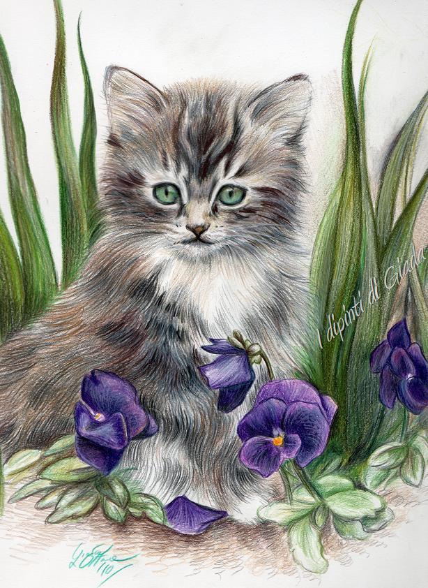 I dipinti di giada gattino con gli occhi verdi for Disegni a matita di cani