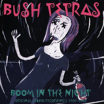 Download: Bush Tetras - Boom in the Night