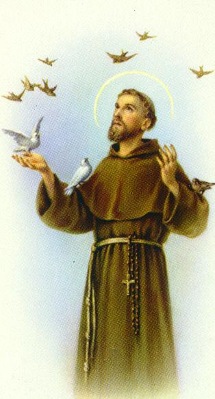 Hermano Francisco