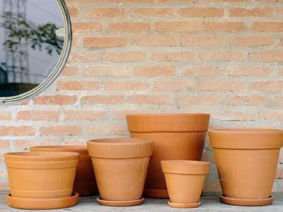 Estufa de Herbologia Vasos+de+barro