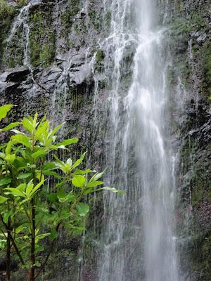 cascata na levada