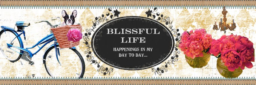 Blissful Life